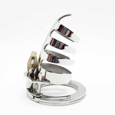 The Classic Stainless Steel Cock Cage