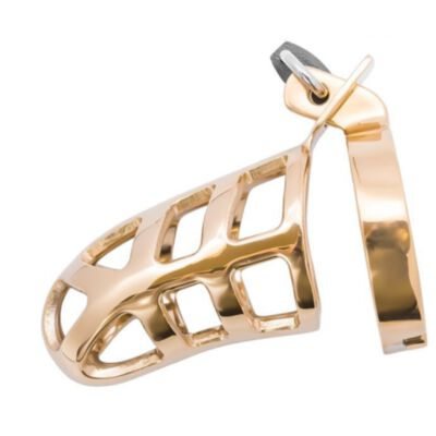 Brutal Stainless Steel Chastity Cage - Gold Platted